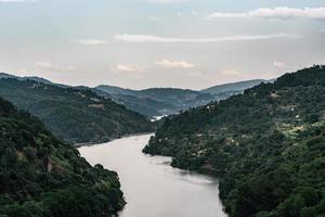 Fluss zwischen grünen Bäumen und Bergen foto