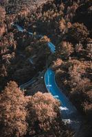 kurvenreiche Straße im Herbst