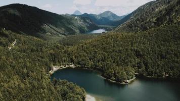 grüne Bäume in der Nähe des Sees tagsüber