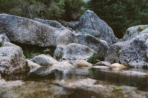 grauer Stein neben dem Gewässer