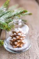 hausgemachter süßer Weihnachtsbaum unter der Glaskuppel