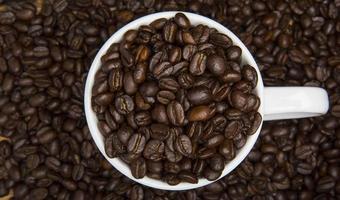 Tasse Kaffeebohnen foto