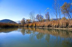 Herbstreise foto