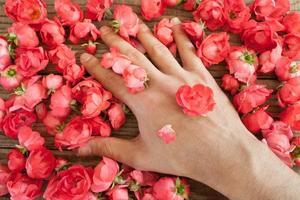 Hand zwischen roten Rosen auf einem Holztisch