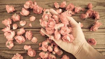 Hand zwischen roten Rosen auf einem Holztisch, Vintage-Effekt