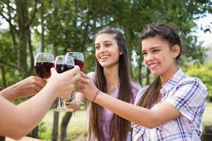glückliche Freunde im Park, die Wein trinken foto