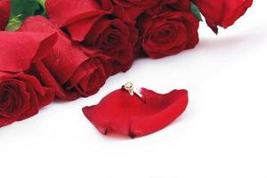 goldener Ring auf einem Rosenblatt runde Rosen