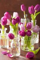 schöner lila Tulpenblumenstrauß in Vasen