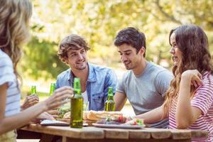 glückliche Freunde im Park beim Mittagessen