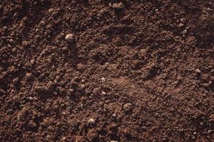 Nahaufnahme von fruchtbarem Lehmboden foto