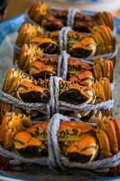Krabbe foto