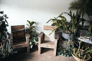 zwei Sessel mit grünen Pflanzen foto