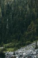 felsige Hügel in der Nähe von grünblättrigen Bäumen foto
