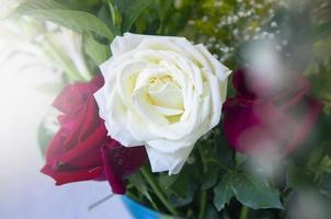 weißer und roter Rosenstrauß