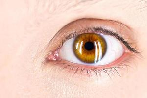 Fokus auf das Auge foto