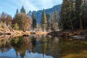landschaftlich reizvolle Landschaft von Bäumen, die auf Wasser reflektieren