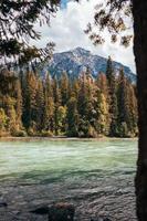 Fluss mit Bäumen umgeben foto