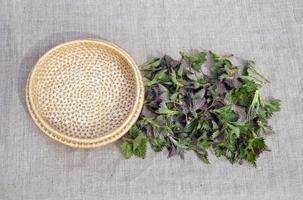frisches frühlingsmedizinisches neetelkraut für salat auf leinentuch foto