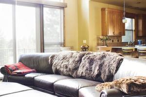 moderner Wohnraum foto