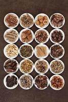 traditionelle chinesische Kräuter foto