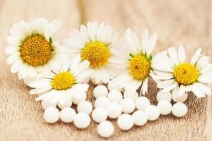 homöopathische Kügelchen und Gänseblümchen