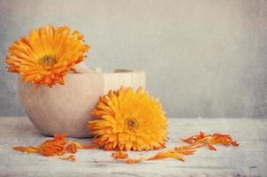 Ringelblumenbehandlung auf Holztisch foto