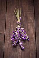 Haufen Lavendel foto