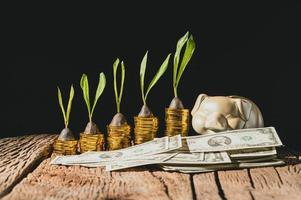 Sparschwein mit Münzen und Dollarnoten auf dem Tisch