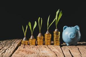 blaues Sparschwein mit Goldmünzen foto