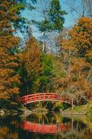 rote Brücke von Bäumen umgeben foto