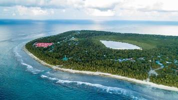 baumbedeckte Insel