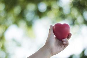 Hand hält ein Herz draußen
