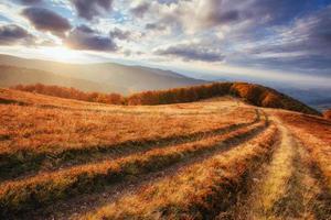 Herbstgasse. Retro-Stil Filter. Instagram Toning-Effekt. foto