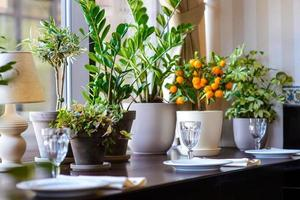 leere Gläser im Restaurant auf Blumenhintergrund gesetzt foto