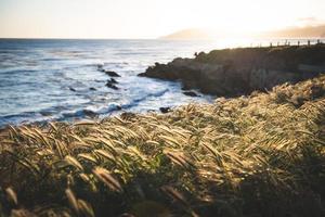 Blick auf das Meer von der grasbewachsenen Küste
