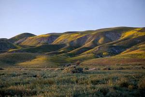 Landschaftsfotografie des grünen Berges