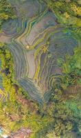 Luftaufnahme von Reisterrassen foto