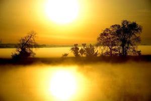 nebliger, sonniger Morgen am Fluss. foto