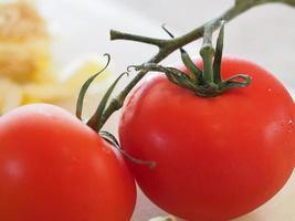 Tomaten am Rebstock