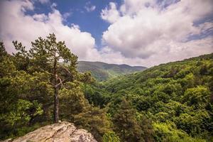 Berglandschaft während des Tages foto