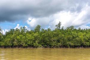 natürliche Flusslandschaft foto