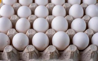 Eier im Karton foto