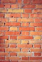 orange und rote Backsteinmauer