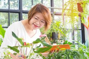 Frau neigt zu Pflanzen foto