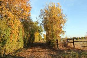 Herbst in der französischen Landschaft foto