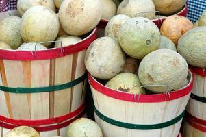Melonen zu verkaufen foto