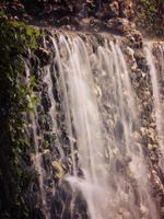 Wasserfall und Efeu