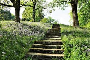 Treppen im Park foto