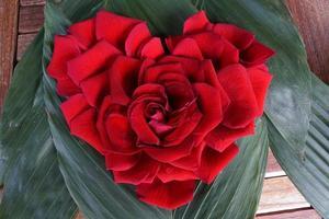 Herz aus roten Rosenblättern foto