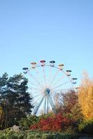 Riesenrad zwischen Bäumen im Park foto